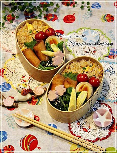 炒飯・春巻き弁当と我が家のワンコ♪リク☆11歳♪_f0348032_17320849.jpg