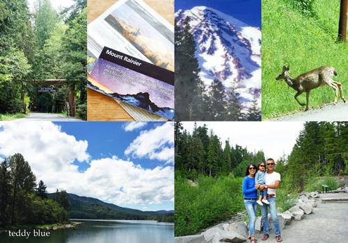 Mt. Rainier National Park, WA  マウントレーニア国立公園_e0253364_15144378.jpg