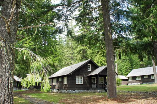 Mt. Rainier National Park, WA  マウントレーニア国立公園_e0253364_15151522.jpg