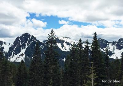 Mt. Rainier National Park, WA  マウントレーニア国立公園_e0253364_15381472.jpg