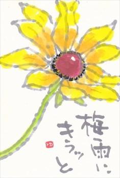 梅雨入り_a0108476_19311887.jpg