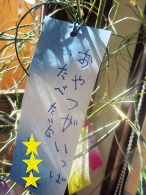 星にねがいを_a0171984_15141169.jpg