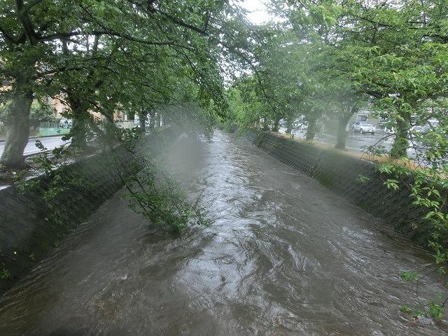 昨日の大雨、被害は? 今日は早速確認しなければ_f0141310_07490330.jpg