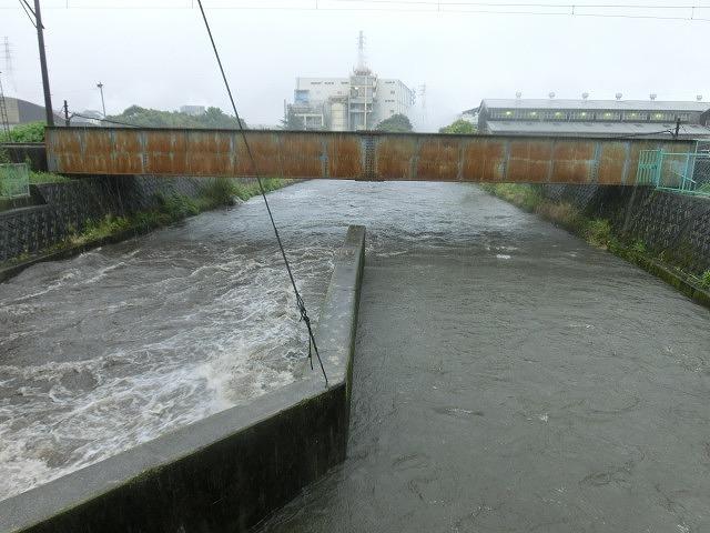 昨日の大雨、被害は? 今日は早速確認しなければ_f0141310_07495766.jpg