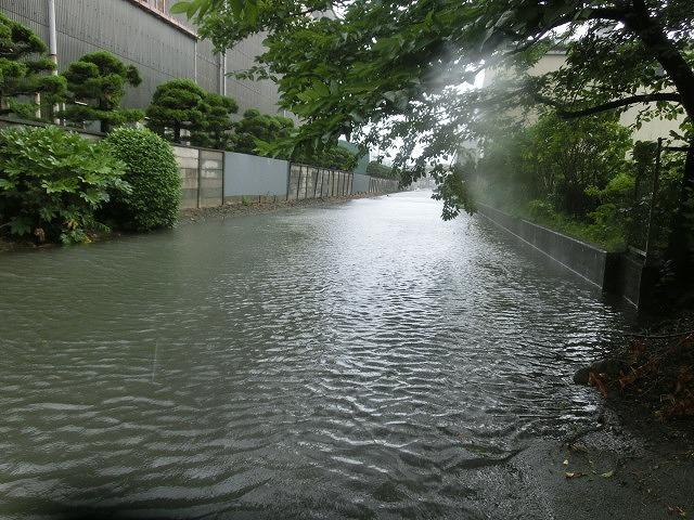 昨日の大雨、被害は? 今日は早速確認しなければ_f0141310_07505004.jpg