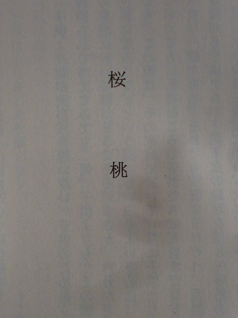 d0202960_05340182.jpg