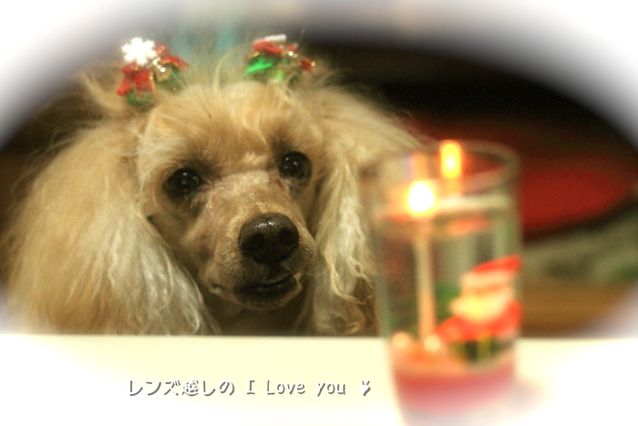 Merry Merry Christmas ♪_d0367763_21071490.jpg