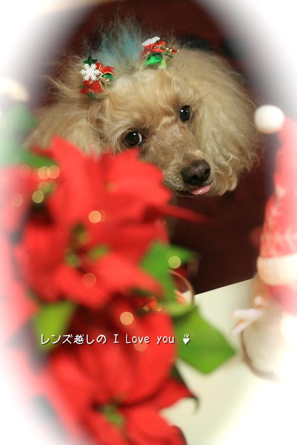 Merry Merry Christmas ♪_d0367763_21071621.jpg