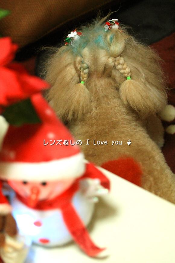 Merry Merry Christmas ♪_d0367763_21072677.jpg