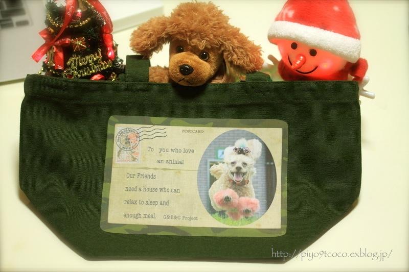 Merry Merry Christmas ♪_d0367763_21072733.jpg