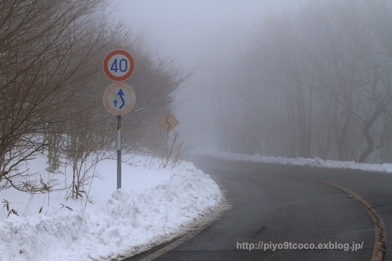 雪景色に焦がれて♪_d0367763_21081323.jpg