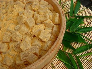 6月22日(木)胡瓜の収穫です_d0278912_06135614.jpg