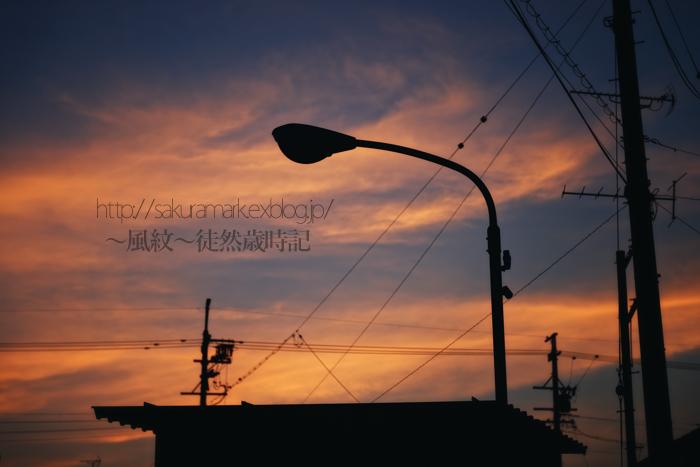 6月の夕暮れと佇む外灯。_f0235723_2013488.jpg