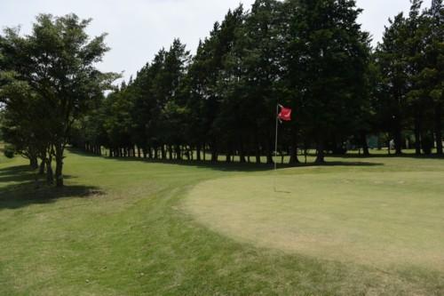 ゴルフ場の誕生から成人まで_f0055131_11350255.jpg