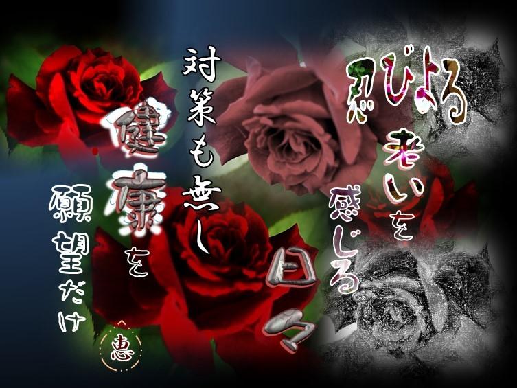f0214467_10583124.jpg