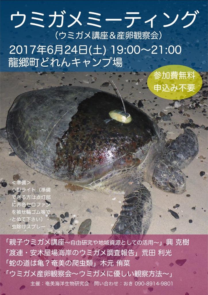 6/24 ウミガメミーティング開催!_a0010095_1644522.jpg