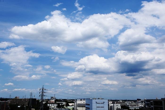 扁平雲(積雲)_b0268615_6421912.jpg