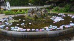 アジサイが彩を添える久安寺の池でした。_c0133422_21571571.jpg