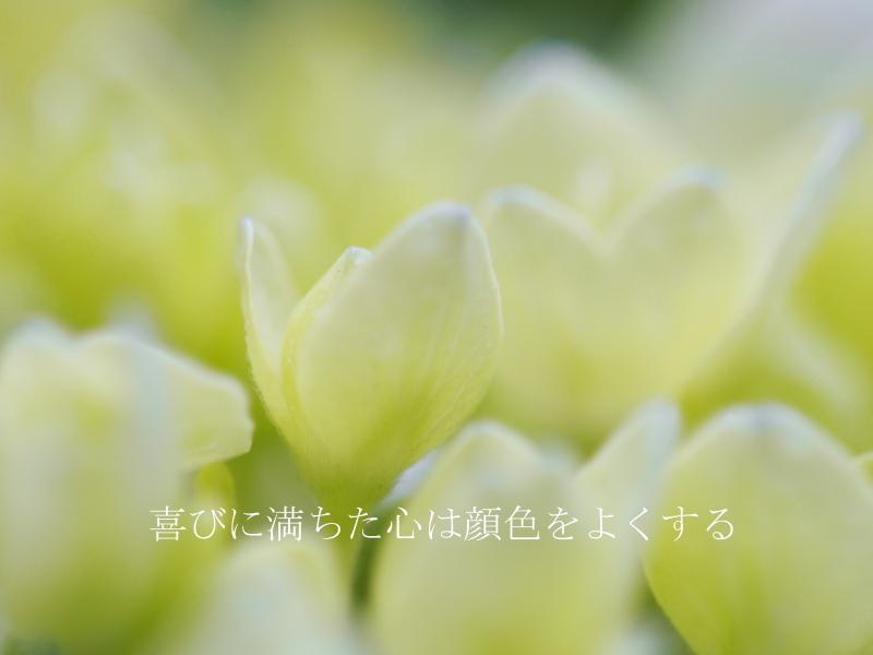 f0215969_09171929.jpg