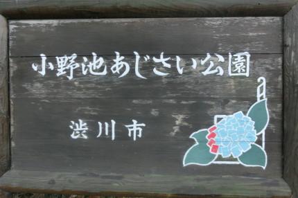 b0193480_1450111.jpg