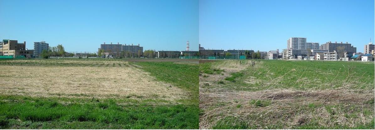 プロ野球新球場建設候補地の一つ_f0078286_15533655.jpg