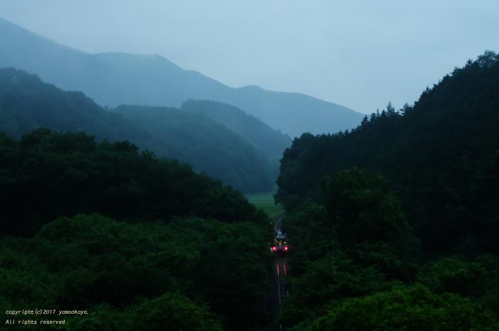 ようやく梅雨らしく_d0309612_00223254.jpg