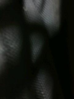 b0136144_15212257.jpg