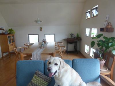 with new sofa  我が家の集いの空間_a0165160_17185831.jpg