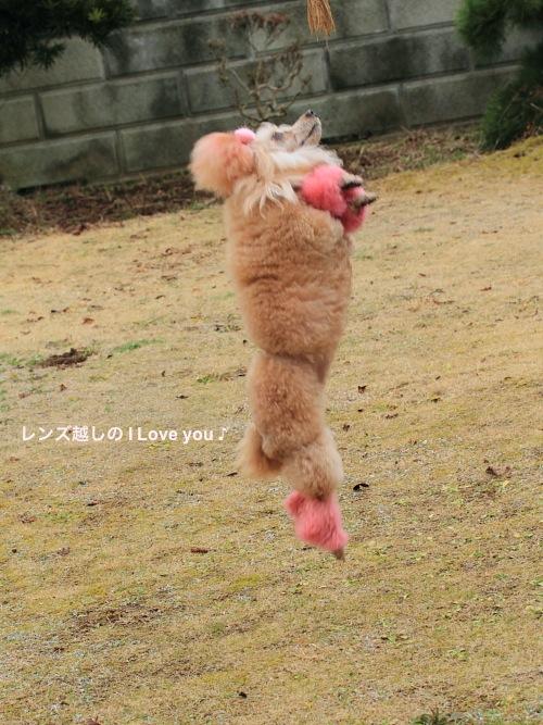 桃色 Love ♪_d0367763_19364468.jpg