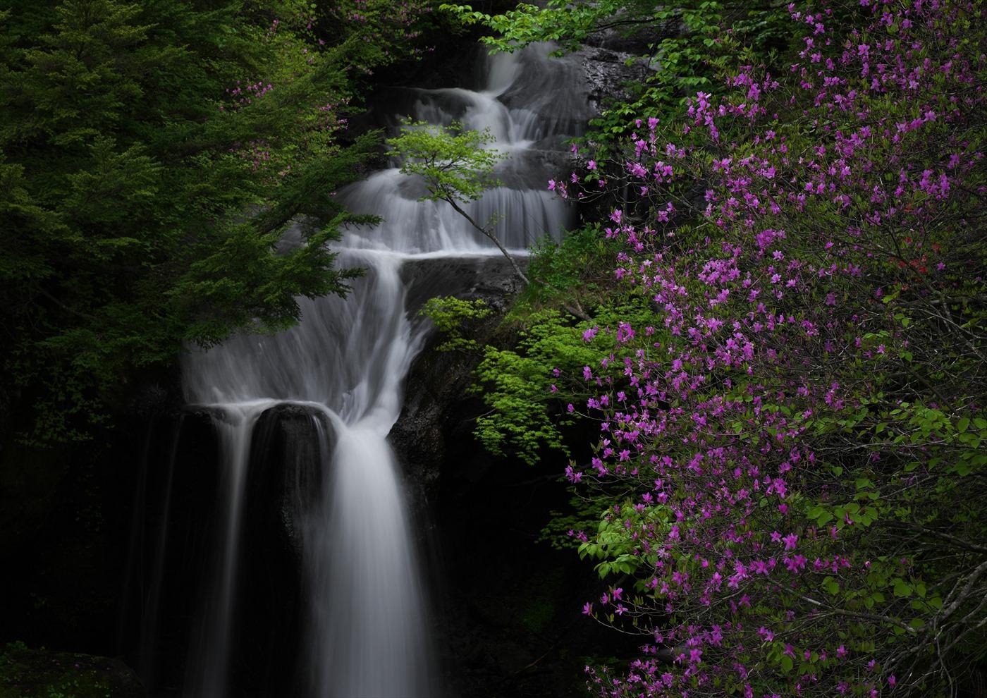 竜頭の滝 1_f0018464_1312521.jpg