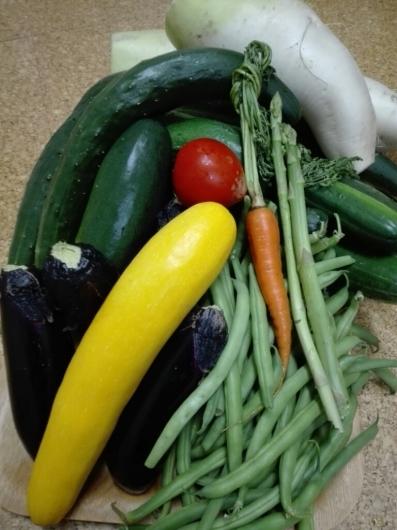夏野菜の収穫とメロンの贈り物_e0356469_20100999.jpg