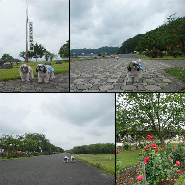 e0234881_2012161.jpg