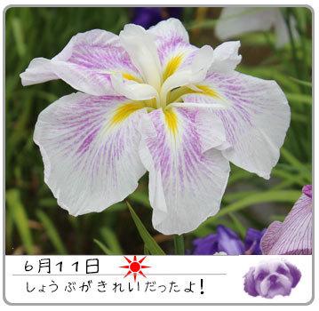 b0024183_18063566.jpg
