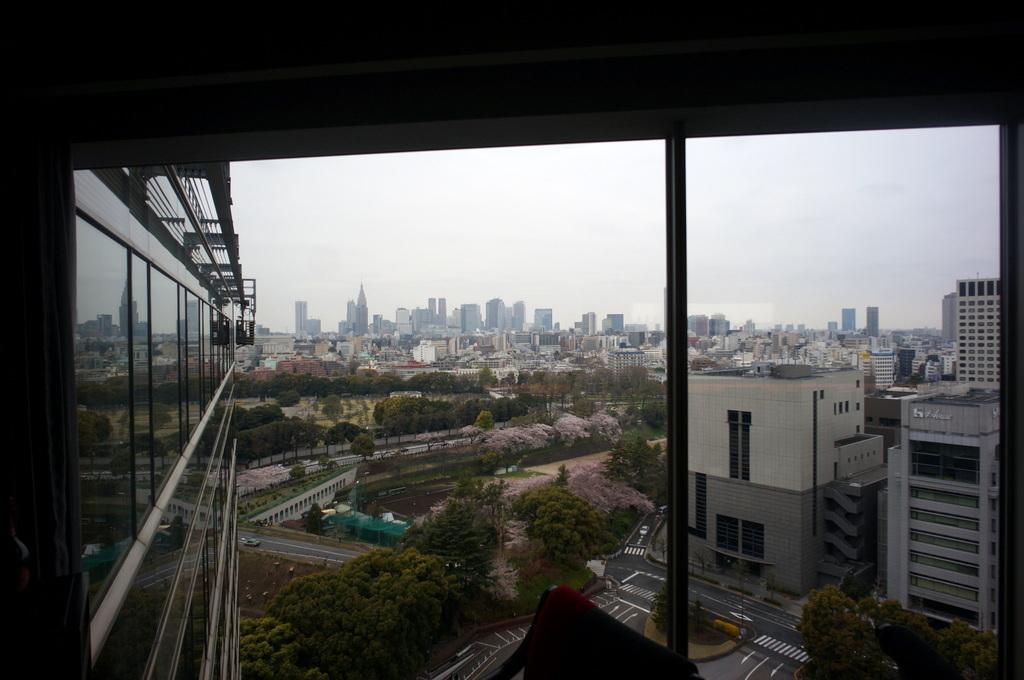 東京Vol.9 (2016年春)猫カフェへ_c0180686_01385392.jpg