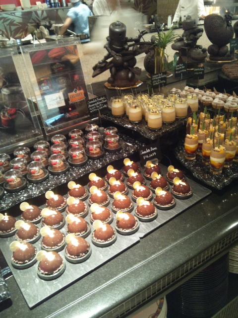ウェスティンホテル東京 ザ・テラス ワールドチョコレート・デザートブッフェ~第1章~_f0076001_23175491.jpg