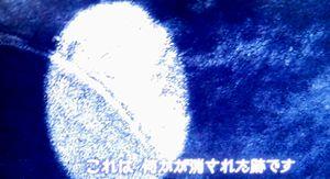 b0044404_10504035.jpg