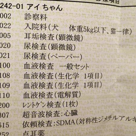 d0359212_20113919.jpg