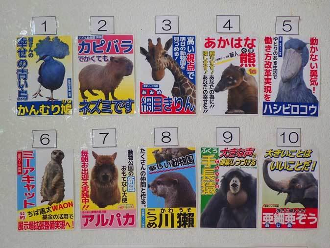 千葉市動物公園「動物科学館」~動物総選挙2017_b0355317_21063937.jpg