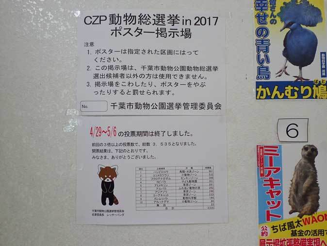 千葉市動物公園「動物科学館」~動物総選挙2017_b0355317_21082515.jpg