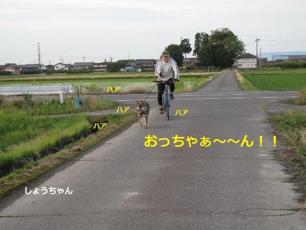 f0143123_10330480.jpg