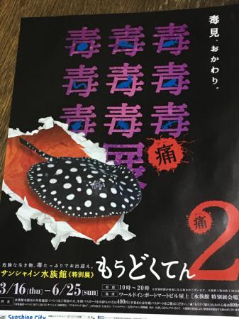 水族館 毒_e0065433_21474589.jpg