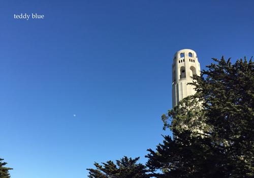 back to San Francisco  ただいまサンフランシスコ_e0253364_14081801.jpg