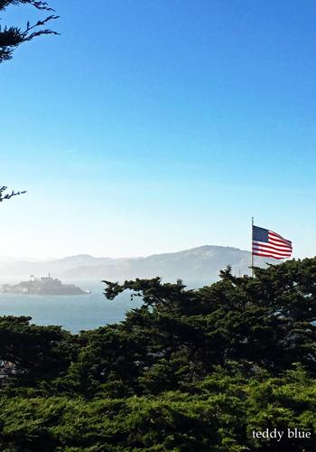 back to San Francisco  ただいまサンフランシスコ_e0253364_14082216.jpg