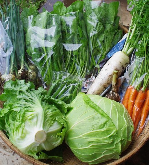 今週の野菜セット(6/27~7/1着)_c0110869_12443681.jpg