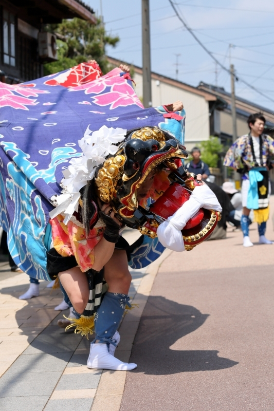 六渡寺の獅子舞 その1_c0196076_16013272.jpg