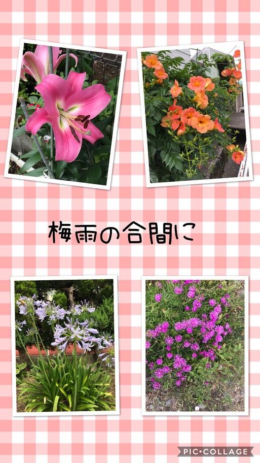 b0063438_16511573.jpg