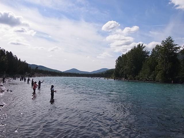 ロシアン川でサーモン釣り Fishing on the Russian River_b0135948_16283977.jpg