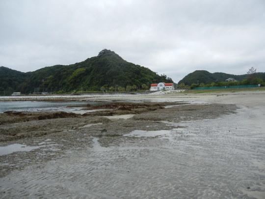 '17,6,27(火)興津海岸までの3時間散歩!_f0060461_08422817.jpg