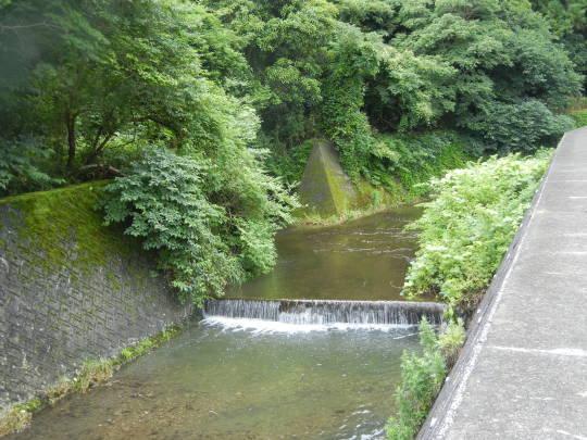 '17,6,27(火)興津海岸までの3時間散歩!_f0060461_09051921.jpg