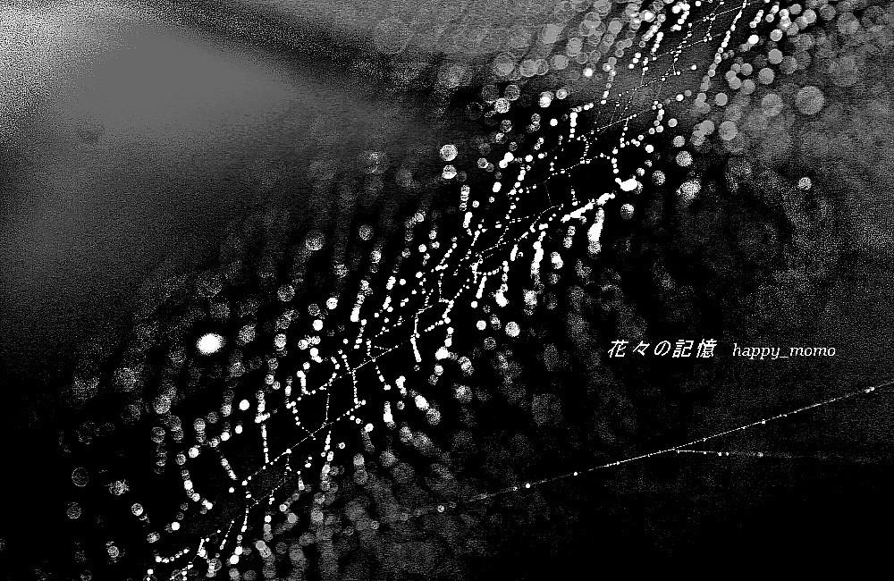 梅雨時の記憶_c0357781_08410130.jpg